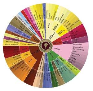 ruota-aromi-del-vino