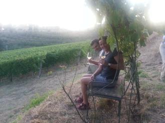 ..tra le vigne