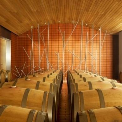 salas-cantine-vino vega sicilia