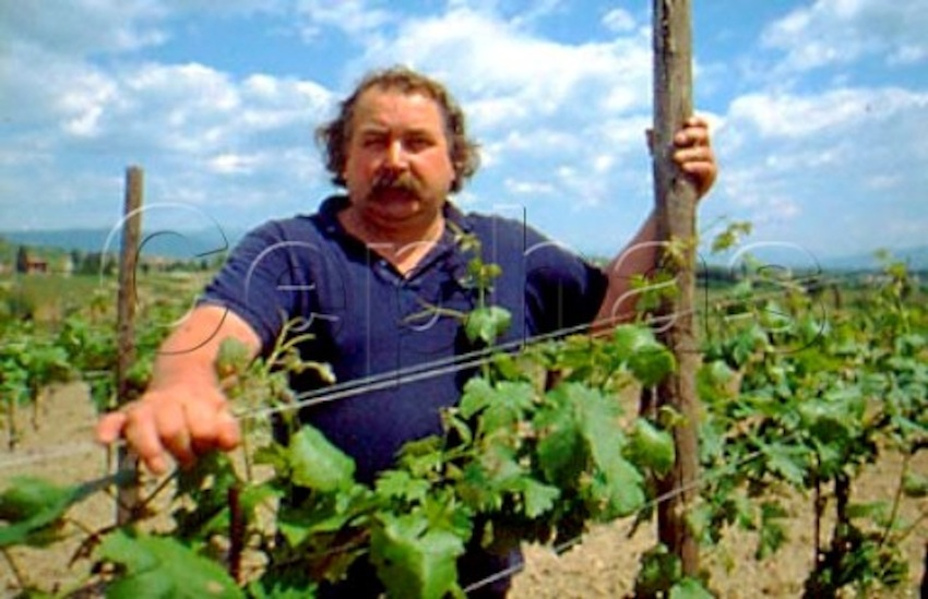 1150018_Alessandro_Princic_owner_and_winemaker___at_Princic_Cormons_Friuli_Italy
