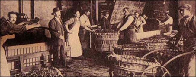 Anciens-pressoirs-1926