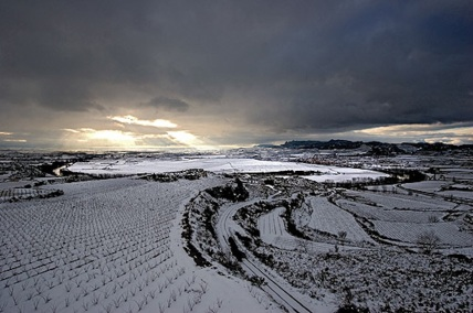 View of Viña Tondonia during the winter of 2005
