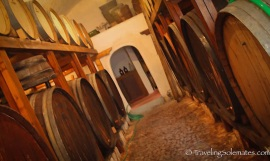 75-Cellar-of-Cavallas-Winery-Megalohiri-Greece