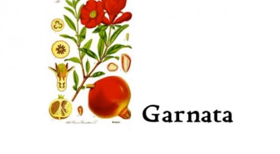 Garnata1