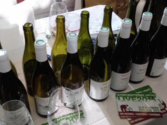 I vini di Emmanuel Giboulot