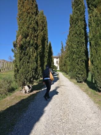 La villa padronale rappresentava la Podesteria di Serravalle nel 1400