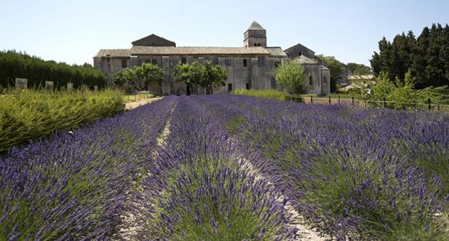 Maison de santé Saint-Paul de Mausole - Saint-Rémy-de-Provence