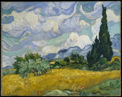 Campo di grano con cipressi